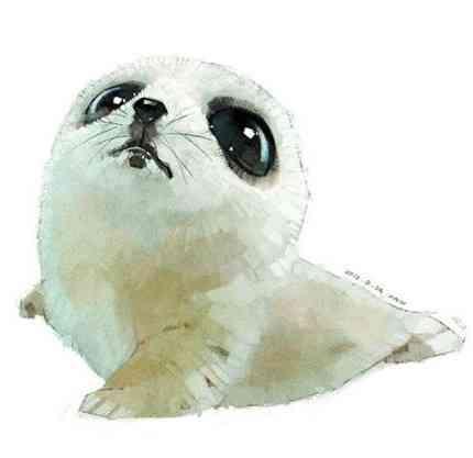 实用:可爱动物插图头像(31款)